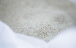 泡盛の原料タイ米